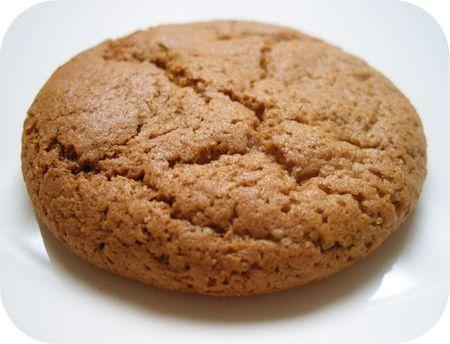 Gingernut 1