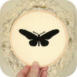 Entomologie - Swallowtail 1